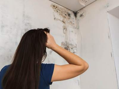 Tracing causes of mould problems